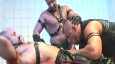 Orgie sexuala cu gay maturi, perversi si excitati